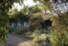 Cactus garden at Vineyard Ranch