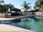 Pool lounging area at Vineyard Ranch
