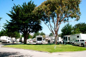 a group of white RVs set up at an RV campground