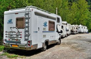 a row of RVs parked next to trees