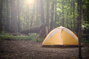 yellow tent in the forest