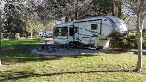 Cardinal Forest River RV parked at a campground
