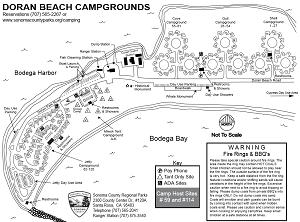 Doran Beach Campground Map