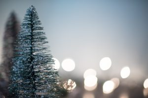 Christmas tree in front of ligts